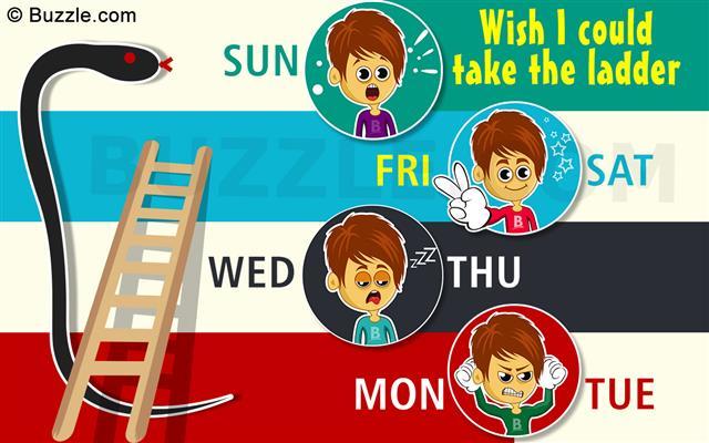 Sunday & Monday