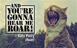 Roaring Kitten