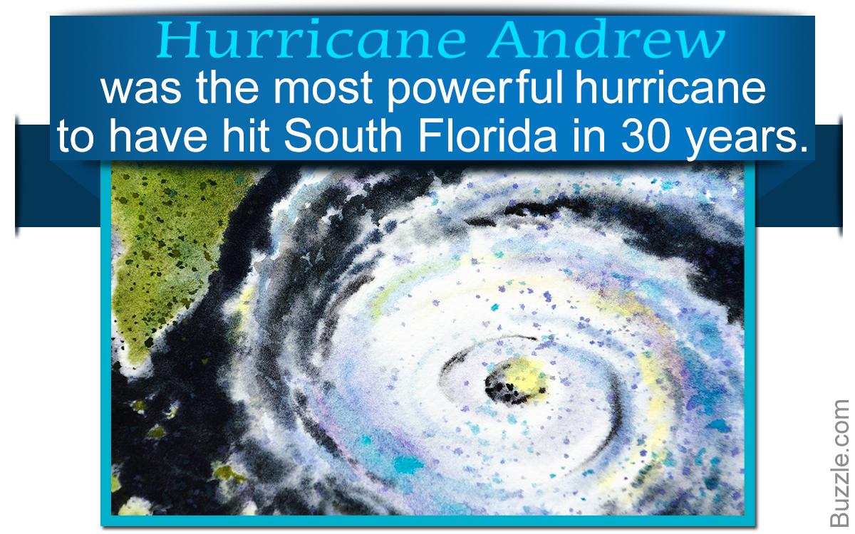 Hurricane Andrew Facts