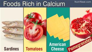 Foods high in potassium calcium and magnesium calcium rich foods list of high calcium foods workwithnaturefo