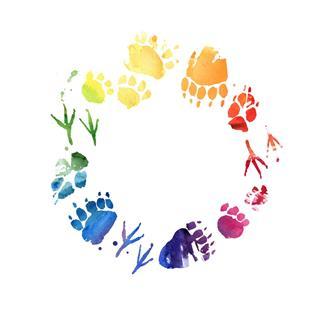 Animal Footprint Watercolor Frame