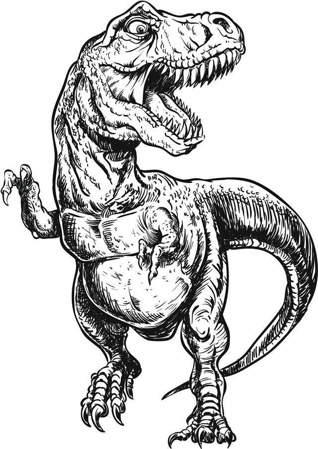 Hand Drawn Tyrannosaurus Dinosaur