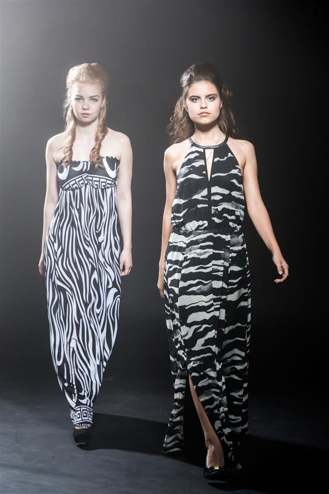 Zebra Fashion Models