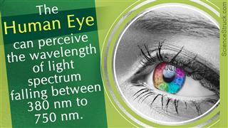 Wavelength of visible light spectrum