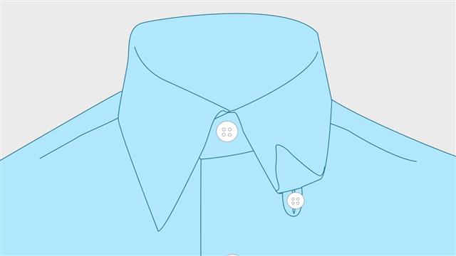 Hidden Button Collar