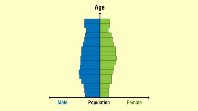Constrictive Population Pyramid