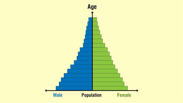 Population Pyramid