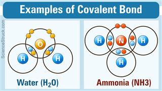 Covalent Bond Examples