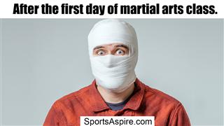 Martial arts class meme