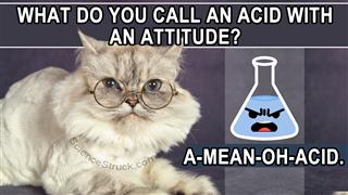 Pun on the Amino Acid