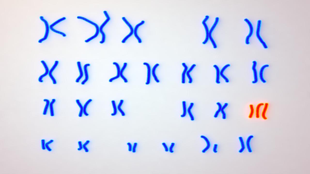 Sixth image of Female Karyotype With Trisomy 18 with Trisomy 18 (Edwards Syndrome)