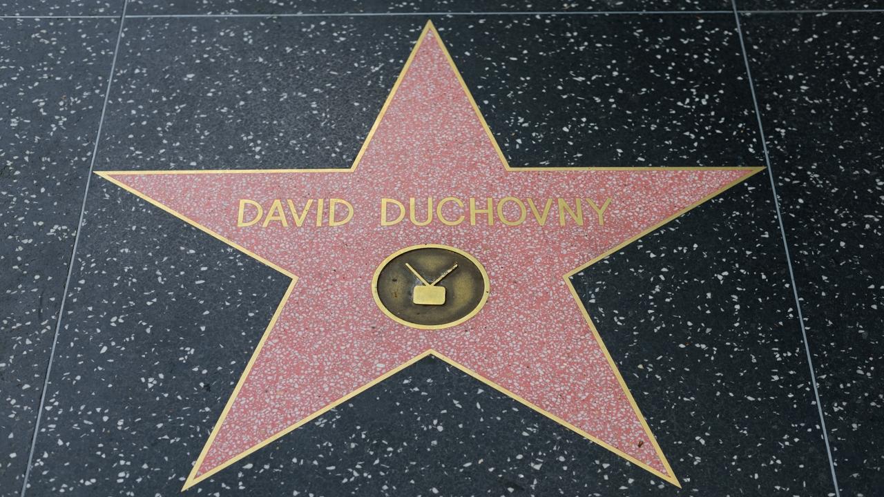 David Duchovny Biography