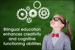 disadvantages of bilingual education/ essay