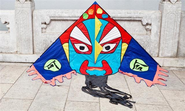 Chinese Kite in Beijing