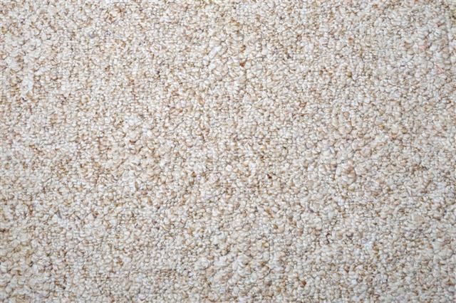 Berber Carpet Texture