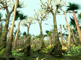 Carboniferous trees