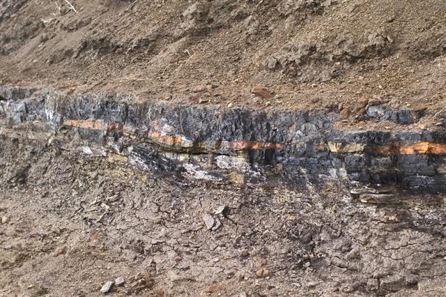 Coal layer