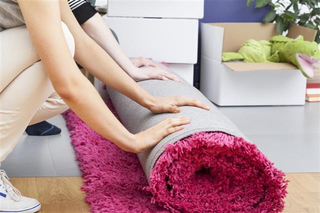 Pink carpet rolling