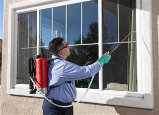 External Pest Control
