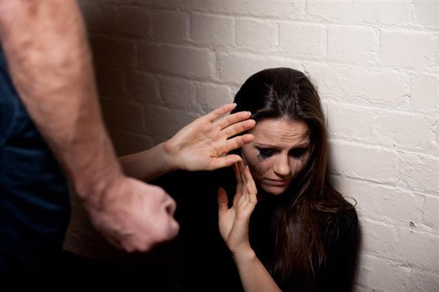 Domestic Violence/Bullying
