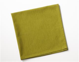 Folded Green Cotton Napkin