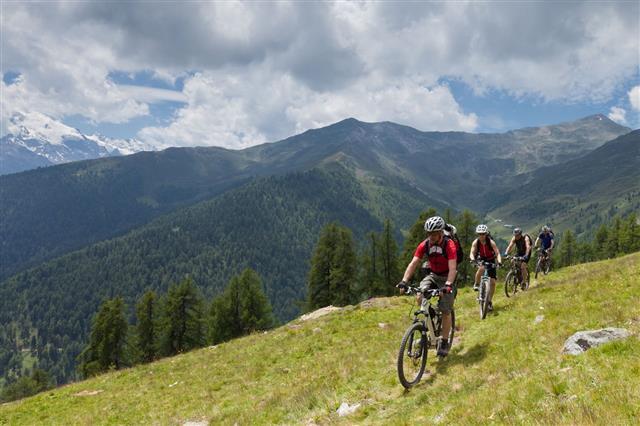 Mountain Bike At Alpine Pastures