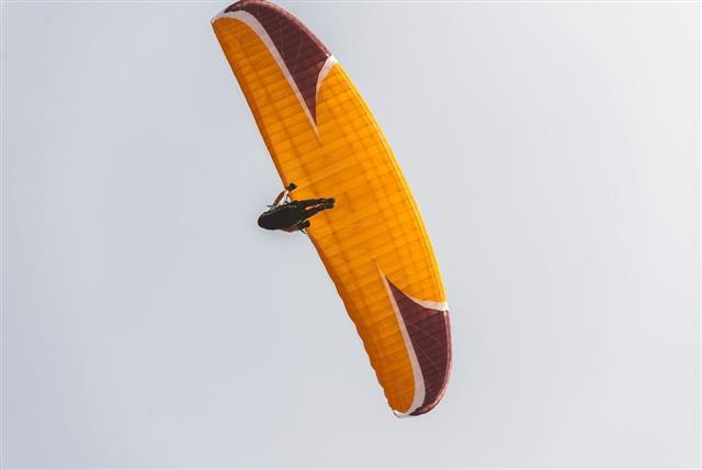 Majestic Paragliding