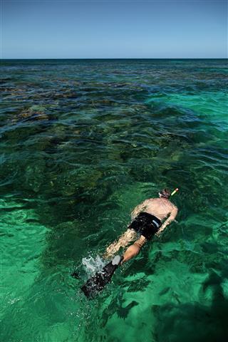 Caucasian Man Snorkeling In Ocean