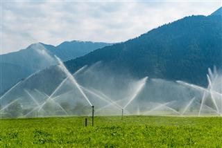 Sprinklers Working On The Field