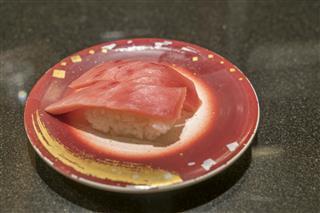 Japanese Toro Sushi