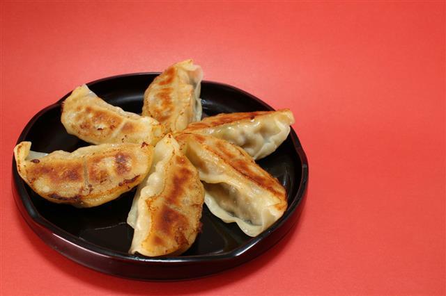Japanese Pan Fried Dumpling