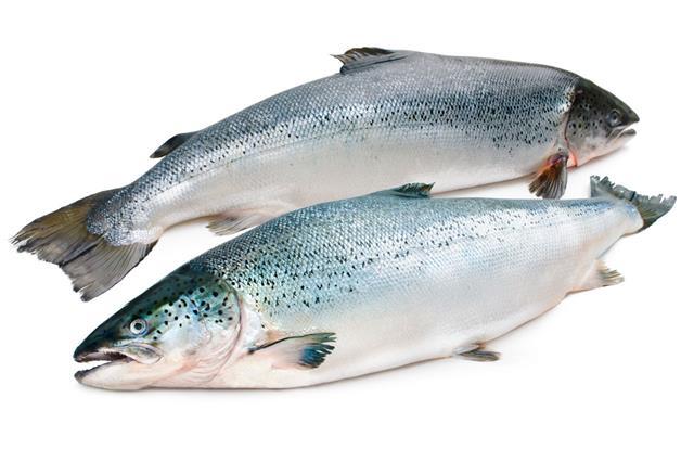 Roasted Shishamo Fish