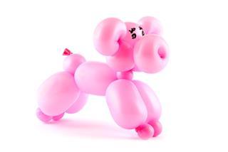 Balloon Pig Art