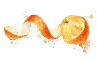 Orange Fruit With Peeled Spiral Skin
