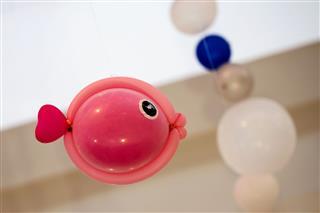Fish Balloon Art