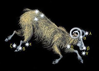 Ram with zodiac constellation