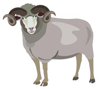 Ram Zodiac Symbol