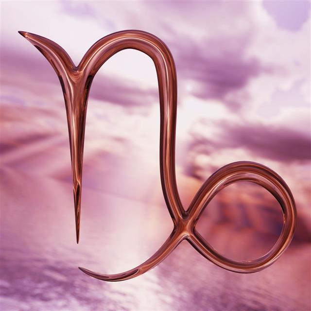 Zodiac Horoscope Capricorn