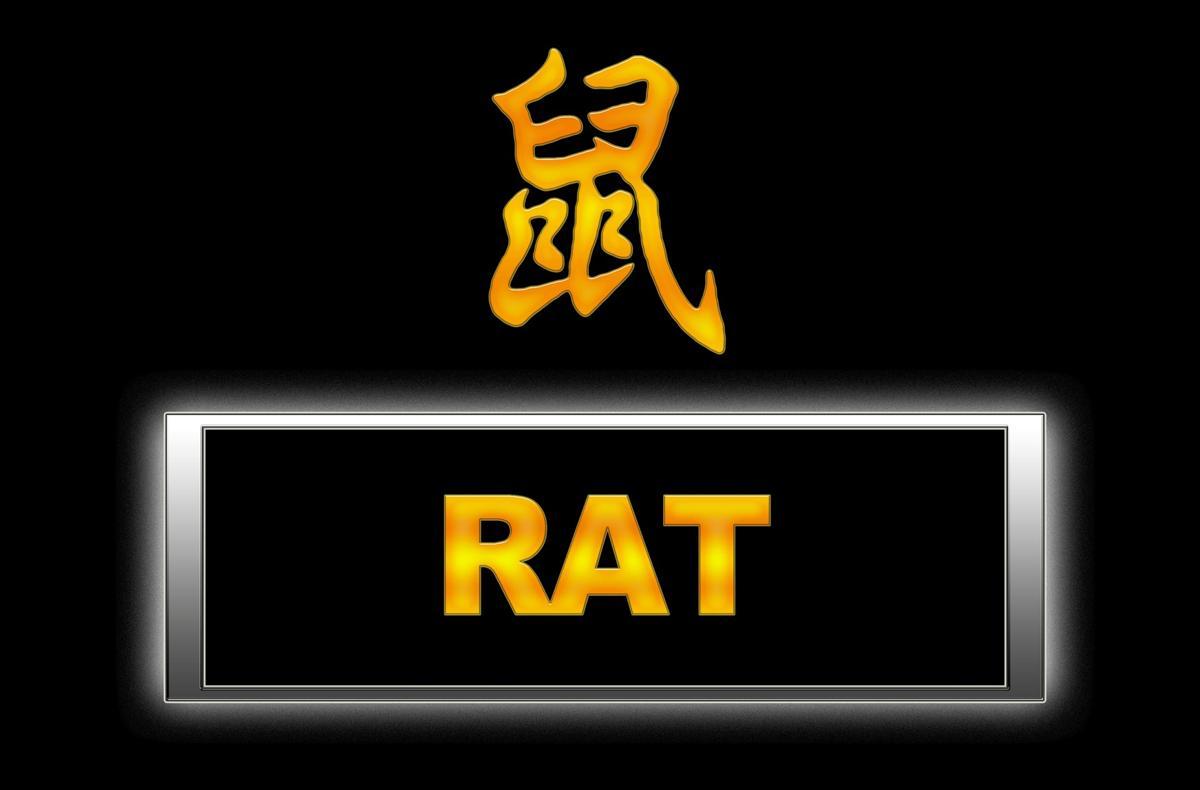 Rat Poisoning