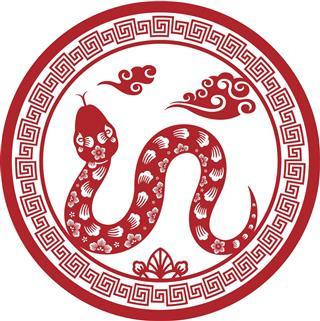 Snake Paper Art