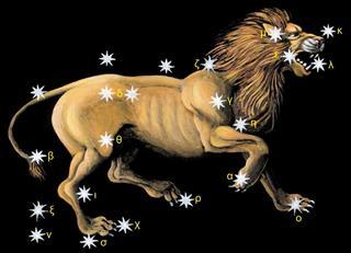 Zodiac symbol leo