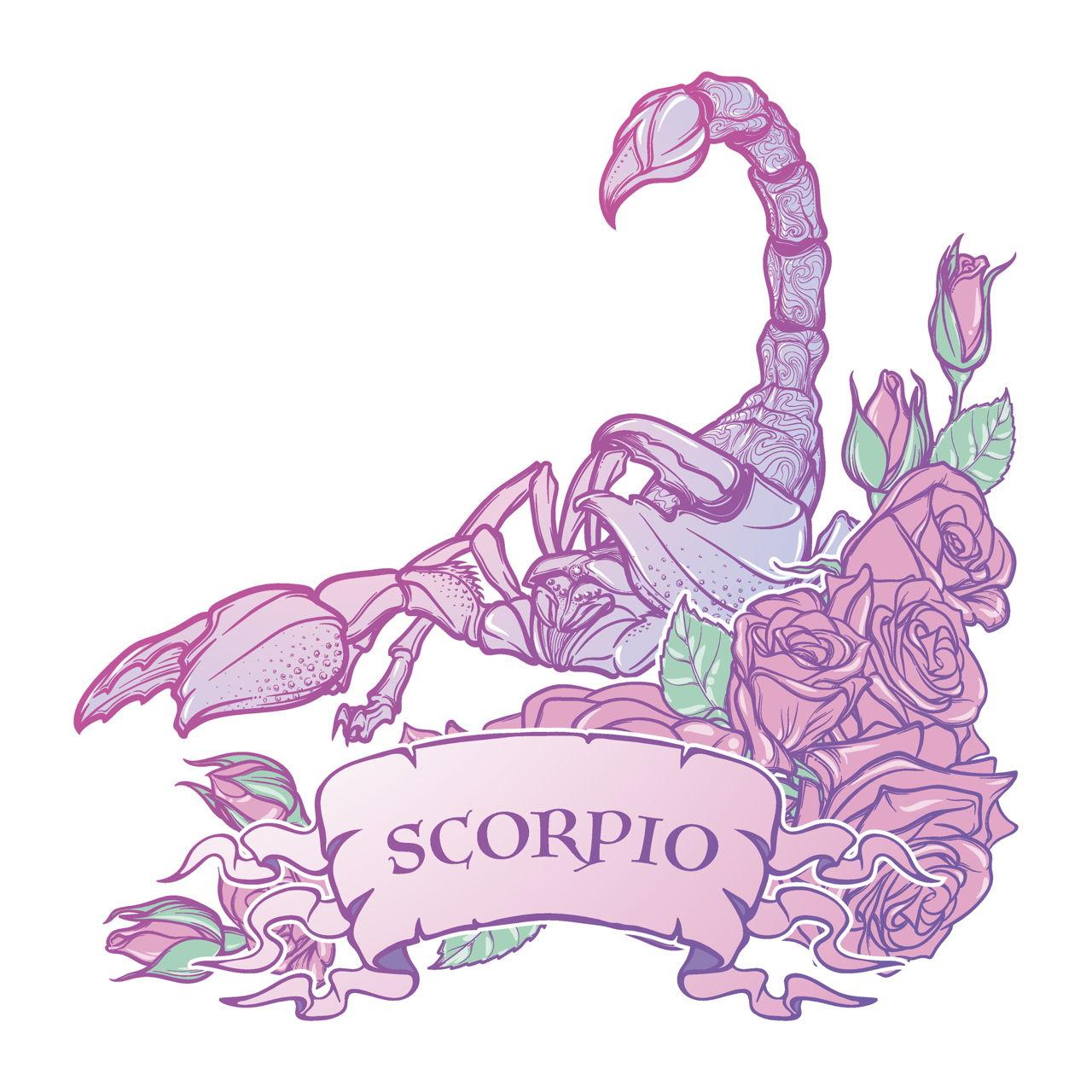 Virgo scorpio compatibility cafe astrology