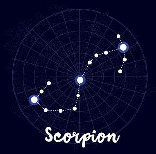 Scorpion Vector Zodiac