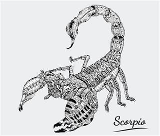 Scorpio Of Zodiac