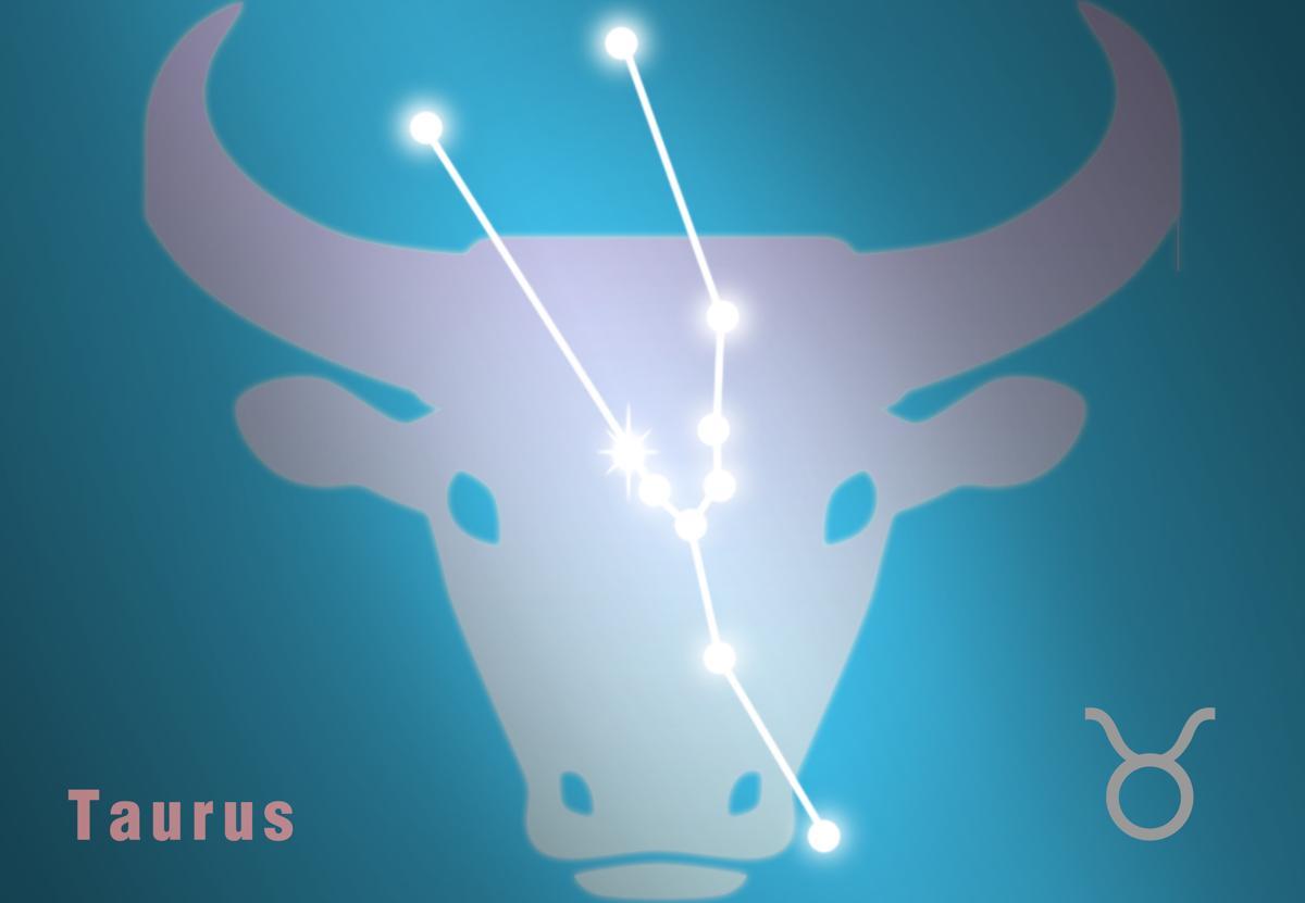 Sexual Compatibility Taurus and Taurus