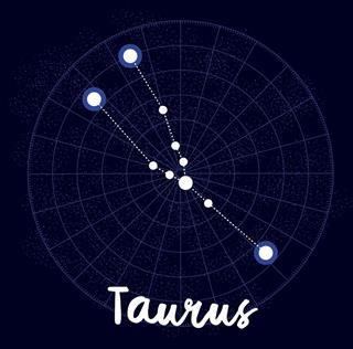 Taurus vector zodiac