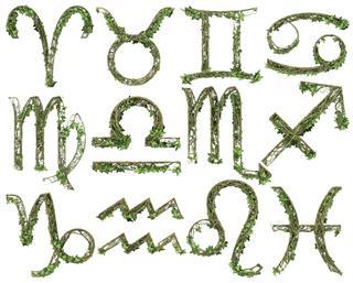 Ivy zodiac signs