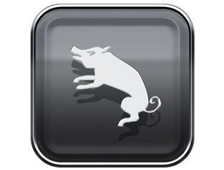 Pig Zodiac Sign