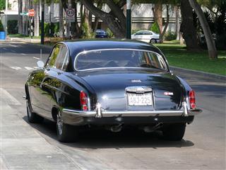 Black Jaguar Mark X
