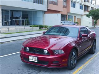 Dark Red Ford Mustang Gt